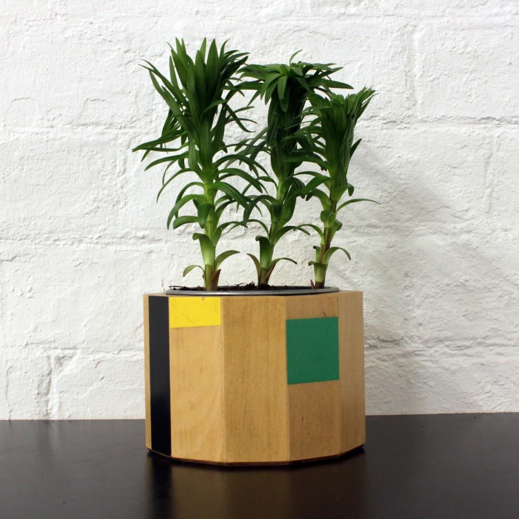 plant pot one